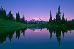 Pink Sunrise on Mt. Rainier