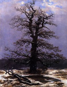 Caspar D. Friedrich; Quercia nella neve; 1827-28; olio su tela.