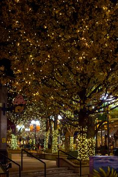 fort collins - the cutest town at Christmas! Disney's main street was actually made to look like Fort Collins!