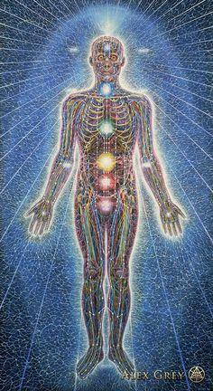 Psychic Energy System Alex Gray 1980 Acrylic on linen Alex Grey, Alex Gray Art, Art Gris, Corps Éthérique, Art Visionnaire, Psy Art, Visionary Art, Sacred Art, Psychedelic Art