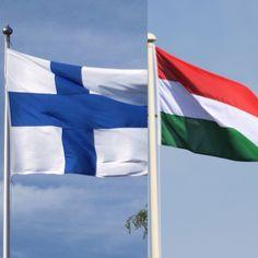 Kemi -Unkari Finland, Flag, Country, Art, Art Background, Rural Area, Kunst, Science, Country Music