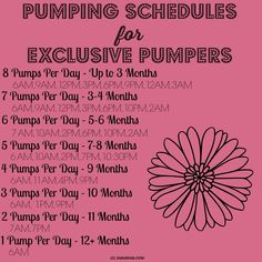 Breastfeeding / exclusively pumping schedule