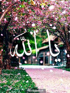DesertRose,;,For More allah Stuff  ☪ http://muslimwomenwearclothestoo.tumblr.com ☪,;,