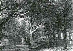 The family graveyard