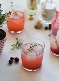 Cranberry Thyme Gin & Tonic | http://www.acozykitchen.com