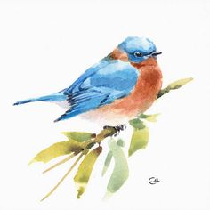 Bluebird Original watercolor painting of Bluebird on a high quality 300 g/m - 140lb Acid Free Sennelier watercolor paper. Hand painted and signed by the artist Maria Stezhko. Please note that colors may slightly vary depending on your monitor settings. Paper size: approx. 7 4/5 x 7 4/5 inches or 20 x 20 cm ****************************************************************************** This original watercolor painting painting will be packed with care preventing it from any...