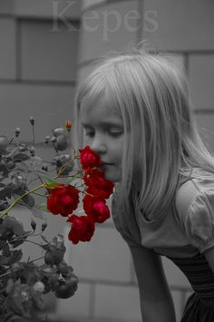 **THIS IS ONE OF MY FAVORITE SELECTIVE COLOR PHOTOS** Red Roses