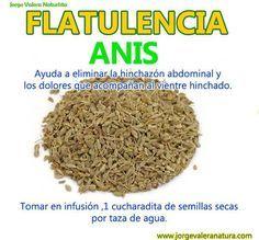 Remedio natural para la FLATULENCIA: Anís