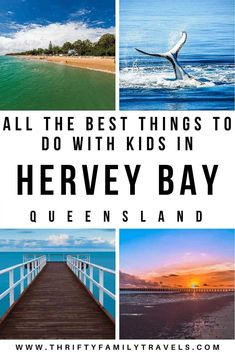 Best Things to do in Hervey Bay with Kids - Thrifty Family Travels Visit Australia, Australia Travel, Queensland Australia, Western Australia, Travel With Kids, Family Travel, Travel Expert, Travel Tips, Whale Watching Tours