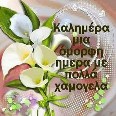 Beautiful Pink Roses, Greek Quotes, Mom And Dad, Good Morning, Prayers, Mornings, Drink, Facebook, Food