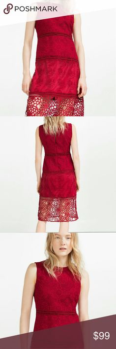 Zara embroidered lace dress (1489) New with tag.Contrast embroidered dress with lace. Sleeveless.  OUTER SHELL BASE FABRIC 100% nylon LACE 100% polyester EMBROIDERY 100% polyester LINING 100% polyester  Color red Zara Dresses