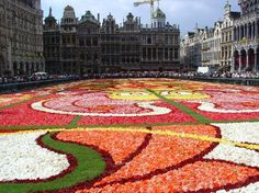 Brussels: Le Tapis de Fleurs #2 of 172 - view from ground level