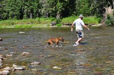 The love of a dog....in Northern Idaho