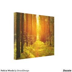 Path in Woods Stretched Canvas Prints