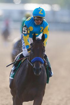 Some kind of wonderful...  American Pharoah.  Triple Crown Winner number twelve.  Victor Espinoza, celebrates atop American Pharoah #5, after winning the 147th running of the Belmont Stakes at Belmont Park on June 6, 2015 in Elmont, New York.