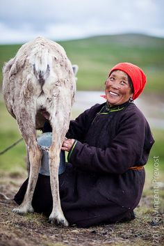 Women are beautiful regardless of age or culture #people #beauty Milking the Reindeer. Mongolia