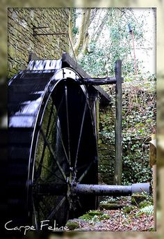 water wheel at mill