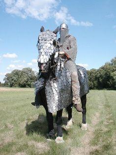 What a Nys'Banian elite warrior caste heavy cavalryman would resemble.