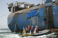 Action against Russian Pirate Trawler in Africa Activists from the Greenpeace ship Arctic Sunrise pull down the canvas hiding the name of pi...