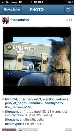 @Healthy Pet Pet in #ATX