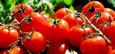 Growing tomato plants from seeds is not that difficult and it is extremely rewarding. Phenomenal Growing Tomatoes from Seeds Ideas. Vegetable Planting Guide, Planting Vegetables, Organic Vegetables, Fruits And Vegetables, Vegetable Garden, Companion Planting, Growing Tomatoes From Seed, Growing Tomato Plants, Grow Tomatoes