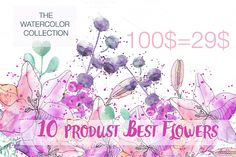 71% off  Big Collection Flowers by Spasibenko Art on Creative Market