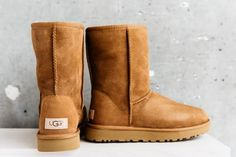 Dreaming of UGG season so we can go back to living in our Classics