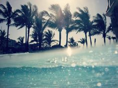 Clear water and palm trees...