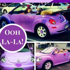 Purple Beatle Car