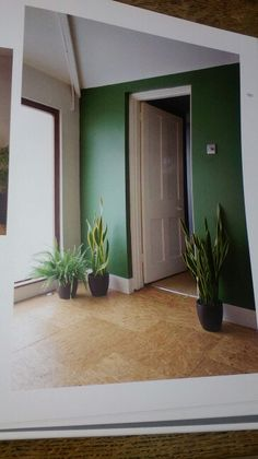 "An emerald green walled plus OSB floor tiled hallway. Taken from the ""Style Council..."" hardback book by Sarah Thompson."
