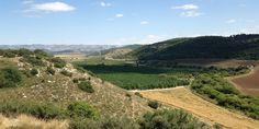 El valle de Elah