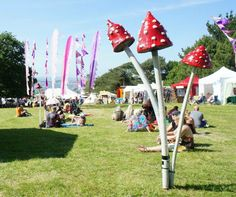3 wishes Faery Festival 2015! Mushrooms and Flags!