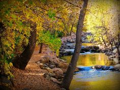 Boulder Creek, Boulder, CO...I loved riding my bike along the creek when I lived there...such a beautiful place to live.