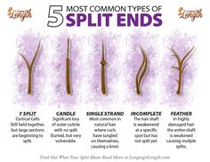 - Despite popular belief, there is no quick cure for split ends; These are the five most common types of split ends and what each indicates about your hair. care for split ends Natural Hair Care Tips, Natural Hair Styles, Split Ends Hair, Hair Science, Hair Frizz, Oily Hair, Damaged Hair Repair, Bleached Hair Repair, Wavy Hair