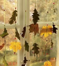 Would like to collect leaves w/ my students and hang them in the windows.