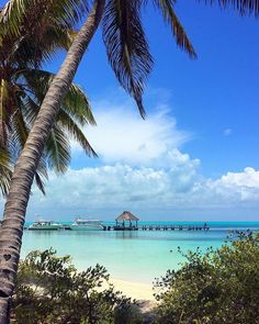 Off the Beaten Path: 8 Unusual Things To Do in Cancun