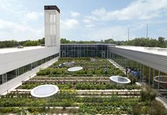 La cubierta vegetal del The Gary Comer (un centro para jóvenes) es un espacio utilizado como escuela para actividades suplementarias tanto p...