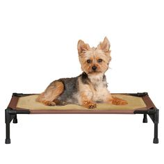 "K&h Pet Products Comfy Pet Cot Small Chocolate (Brown)/Tan 17"" x 22"""