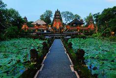 Cafe Lotus view, Ubud- Bali