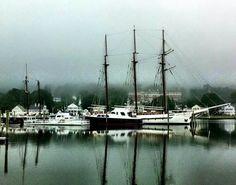 Foggy day in mystic