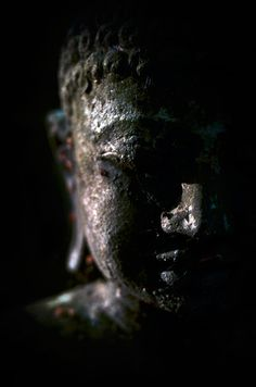 """""""I teach one thing and one thing only: suffering and the end of suffering."""" -Buddha"""