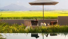 Soori Bali hotel is a luxury design hotel in Tabanan, southwest Bali, Indonesia. Soori Bali hotel offers exclusive pool villas, a spa, gym & 3 restaurants. Hotels And Resorts, Best Hotels, Luxury Hotels, Scda Architects, Farm Stay, Resort Villa, Outdoor Living, Outdoor Decor, Luxury Villa