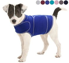 Dog Relaxants - Vivaglory Anxiety Shirt with Stress Relief and AntiAnxiety Effect for Dogs Royal Blue L *** Learn more by visiting the image link. (This is an Amazon affiliate link)