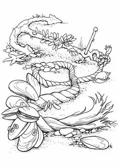Nice Ocean Plants Coloring Pages 85 print coloring image Printable