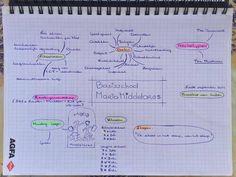 Onderzoek organisatie - Mindmap