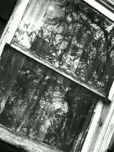 Window!!