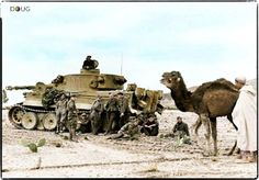 A tropical version Tiger 1 pausing with some Afrika Corp grenadiers while a Bedouin Arab and camel pass thru.