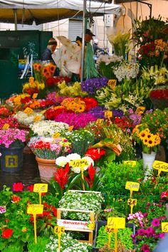 Flower Market in Florence  . ˛ • ° ˛˚˛ *•。★ ˚ ˚*