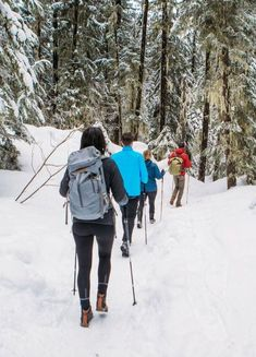 Tri-Fold trekking poles are compact, versatile, and provide incredible hiking support. Get yours now! #snowshoeing #hiking #outdoor