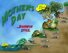 Mother's Day Darwin Style